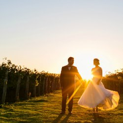 Highdown Vineyard Wedding Venue Worthing